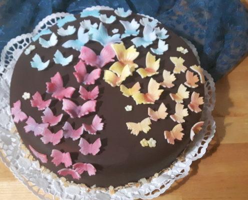 Schmetterlinge und Schokolade